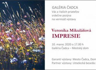 Pozvánka na virtuálnu prehliadku výstavy Veroniky Mikulášovej