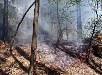 DHZ Rajecké Teplice zasahoval pri požiari pod Skalkami