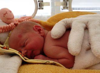 Žilinská pôrodnica láme rekordy aj tento rok