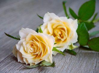 V obci Bziny oslávili Deň matiek netradične