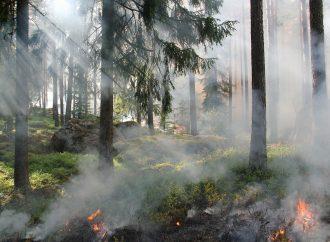Polícia v Rajci upozorňuje občanov na zákaz vypaľovania porastov bylín, stromov a kríkov