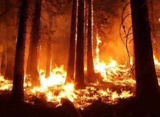 Okresné riaditeľstvo Hasičského a záchranného zboru v Martine odvoláva čas zvýšeného nebezpečenstva vzniku požiaru