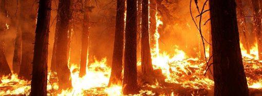 Upozornenie na zvýšený výskyt lesných požiarov