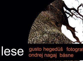 Slovenské národné múzeum pozýva na fotovýstavu V lese