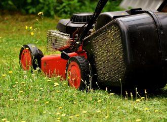 Pozemky treba udržiavať a kosiť, vyzýva žilinská samospráva
