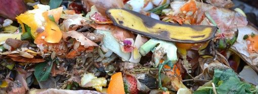Zber kuchynského odpadu v Liptovskom Mikuláši