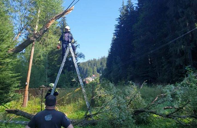 Profesionálny zásah DHZ Horný Kelčov pri odstraňovaní spadnutého stromu