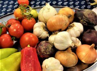 Výstava ovocia a zeleniny. Tešíme sa na vás na podujatí Dary zeme