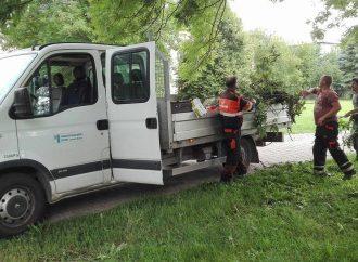 Vývoz biologicky rozložiteľného odpadu v Liptovskom Mikuláši bol pre tento rok ukončený