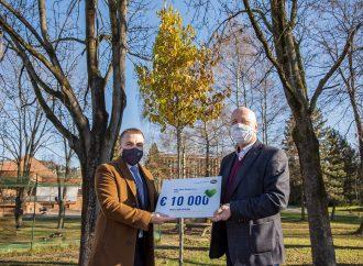 Dolnokubínska samospráva vysadila vyše 50 nových stromov