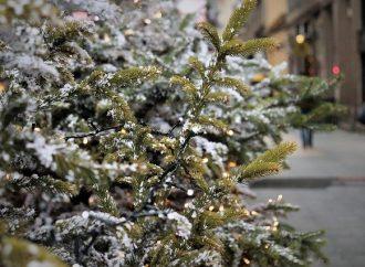 Stretnutie s Mikulášom a rozsvietenie vianočného stromčeka v Bytči bude tento rok netradičné