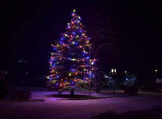 TV SEVERKA – Vianočný stromček