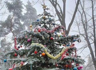 Vianočné ozdoby zo spoločných komunitných stromčekov si môžu obyvatelia Liptovského Mikuláša zvesiť do konca januára