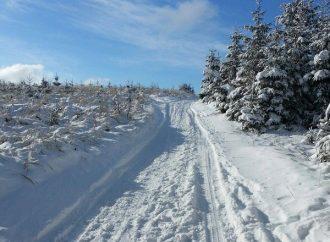 Beskydsko – Javornícka lyžiarska bežecká magistrála
