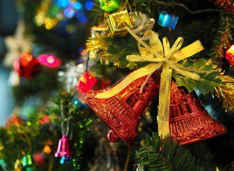 Mesto Liptovský Mikuláš zabezpečí odvoz stromčekov
