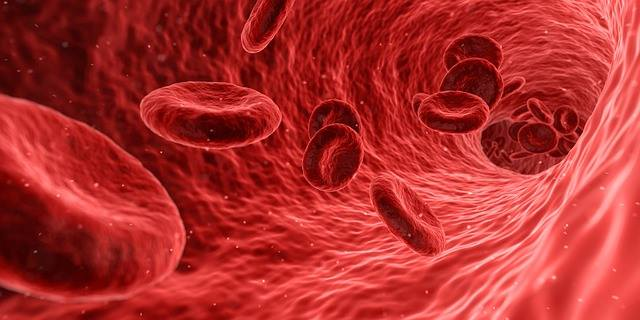 Tomáš Šimurda k Svetovému dňu hemofílie: Aj s týmto závažným ochorením sa dá prežiť krásny život