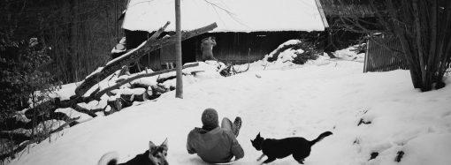 Fotografie Ondreja Čechvalu z osady Zlámaná vyhrali 9. ročník súťaže Slovak Press Photo