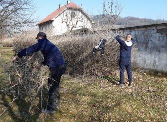 Jarné upratovanie v Budatínskom parku