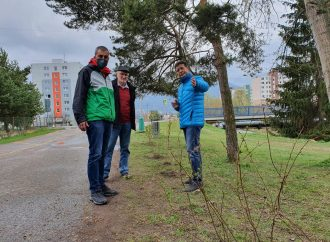 Nové kríky na Podbrezinách zabránia parkovaniu na zeleni