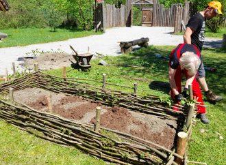 Príprava stredovekej dediny Paseka je v plnom prúde
